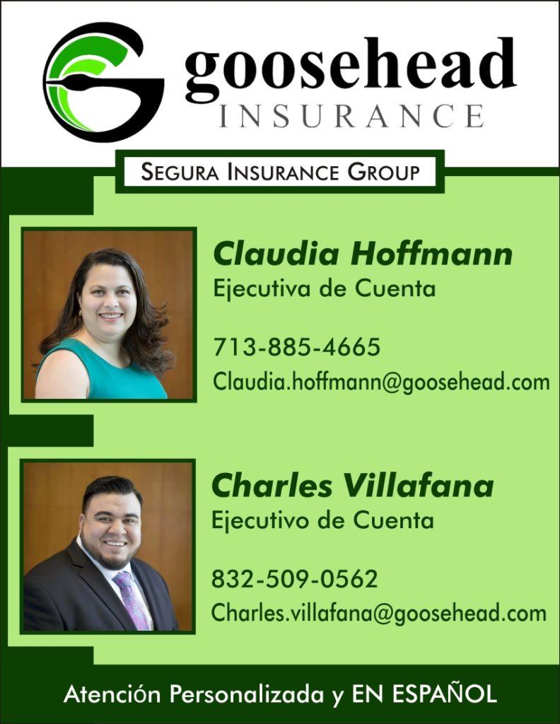 Goosehead Insurance Display Ad